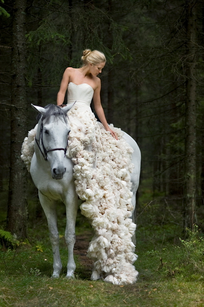 white horse with happiness bride and her detailed wonderful wedding gowns