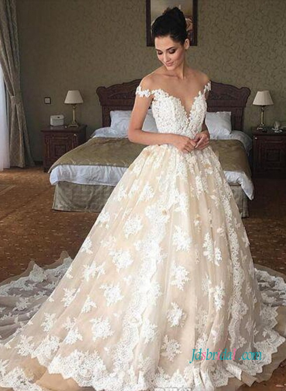 H1009 Y Sheer Top Plunging Lace Princess Wedding Dress
